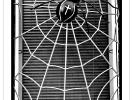 Die Spinne im Netz
