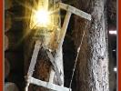 Schuppen Licht