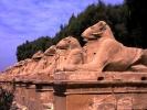 Besuch des Karnak-Tempel