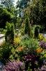 Blumenmeer im Sonnenschein