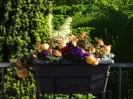 unere Terrasse mit Blumenkasten...