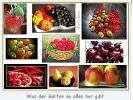 Was der Garten uns alles schenkt