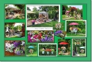 Hansis Garten / Nachbars Garten 2