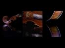 Hier habe ich meine Geige mal vorgenommen