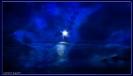 Wenn der Mond die Nacht erhellt