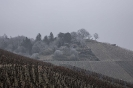 Nebel, Raureif und klirrende Kälte.