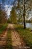 der weg am Fischersee