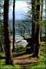 Der Weg zum Naturstrand an der Ostsee