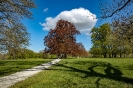 Heute bin ich durch den kompletten Rosensteinpark gelaufen, das sind 5 Kilometer pro Richtung
