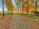 weg in Sodersdorf