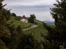 Weinwanderweg......