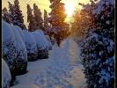 Als der Schnee sich türmte