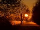 Winterlicher Morgen