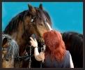 Die Pferdepflegerin ,