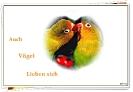 Auch Vögel haben Herz