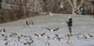 Dieser Vogelflüsterer betreut in Stuttgart